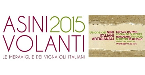 Dégustation | ASINI VOLANTI 2015 | World Wine Web | Scoop.it