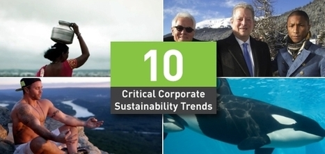 10 Critical Corporate Sustainability Trends to Watch in 2015 and Beyond | Sustainable Brands | For a more sustainable marketing ... | Scoop.it
