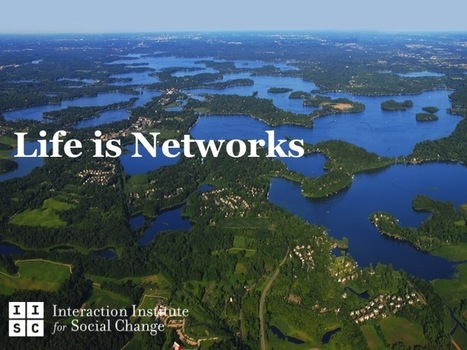 Living Systems Lessons for Social Change Networks   City Building Networks   Scoop.it