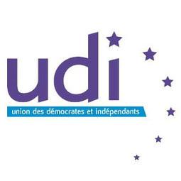 Election du bureau de l'UDI du Rhône | Lyon ma Ville | Scoop.it