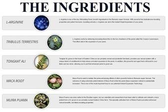 Explore The Ingredients Breakdown Of Male Enhan