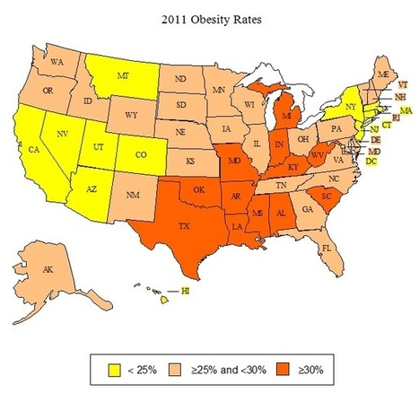 Issue Brief: Analysis of Obesity Rates by State - Trust for America's Health | Healthy Vision 2020 | Scoop.it