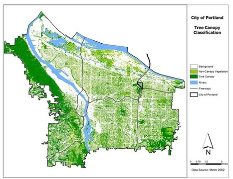 Low-Canopy and Under-Served Neighborhoods | Program Highlights | The City of Portland, Oregon | Farming, Forests, Water, Fishing and Environment | Scoop.it