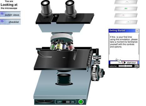 Microscopio virtual   Anatomía e histofi...
