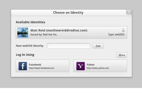 webSSO.github.com by webSSO | JANUA - Identity Management & Open Source | Scoop.it