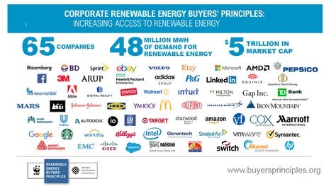 Corporate Renewable Energy Buyers' Princi