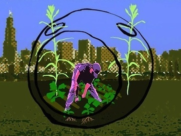 Is There an Urban Agriculture Bubble? — City Farmer News | Vertical Farm - Food Factory | Scoop.it