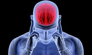 Neuromarketing - ItsB! - Comunidade - Google+   BrainLovers   Scoop.it