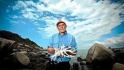 Great reef catastrophe | theage.com.au | Environmental Happenings | Scoop.it