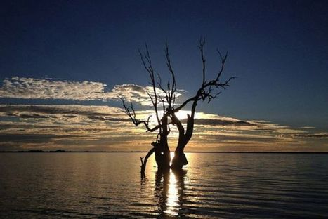 'Red List' introduced to protect at risk ecosystems - ABC News (Australian Broadcasting Corporation)   Messenger for mother Earth   Scoop.it
