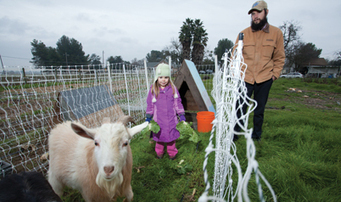 Comstock's - Feudal Attraction: Growtel' concept thriving in West Sac   Market Growing   Scoop.it