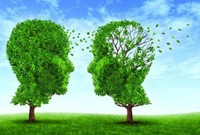 How EMDR Therapy Opens a Window to the Brain | Brain World | EMDR Therapy | Scoop.it