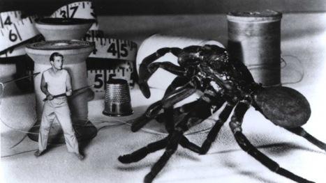 Tim Burton: Nine monster movies that inspired him   On Hollywood Film Industry   Scoop.it