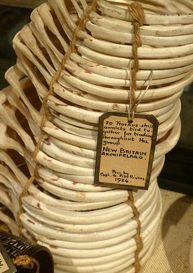 Pitt Rivers Museum : La valse des étiquettes   Detours des Mondes   Scoop.it