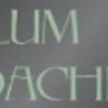 Rolf Blum Coaching