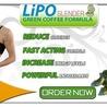 Buy Lipo Slender Green Coffee in Canada