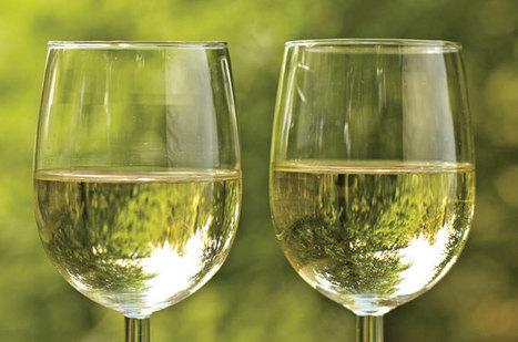 Vino Ecology | 'Winebanter' | Scoop.it