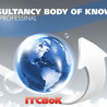 IT Consultancy Body of Knowledge