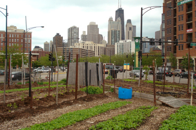 Chicago's urban farm district could be the biggest in the nation | Extension Works the Food System | Scoop.it