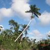Bird Watching & Conservation In Belize