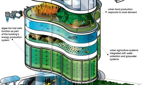 Envisioning the urban skyscraper of 2050 | Mrs.DunkenGeography | Scoop.it