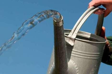 Monthly gardening tips & advice - March / RHS Gardening | Gardening | Scoop.it