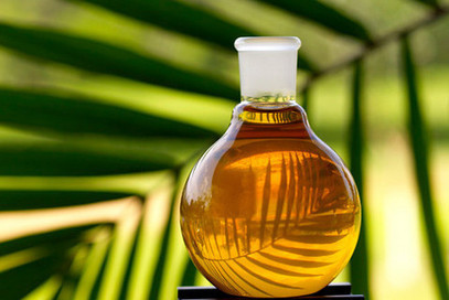 Is methane from palm oil waste the next industry climate concern? | Erba Volant - Applied Plant Science | Scoop.it