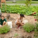 Permaculture Garden at UMass Documented on Video - Sustainablog (blog) | Simple, sustainable living. | Scoop.it