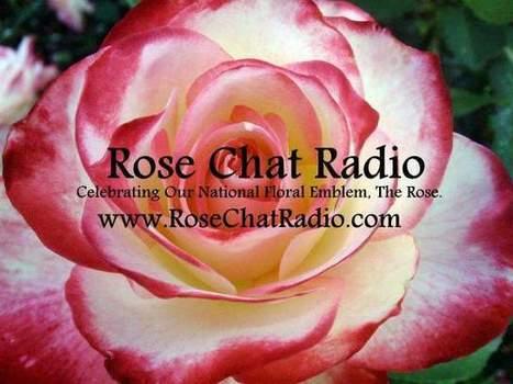 Rose Chat Radio | Facebook | Annie Haven | Haven Brand | Scoop.it