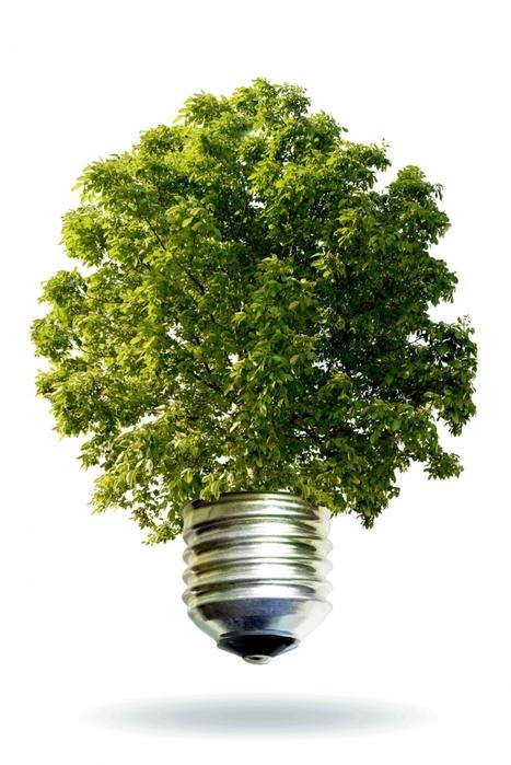 Ecologie : le temps du passage à l'acte | Energie : Résistances et Alternatives écologiques | Scoop.it