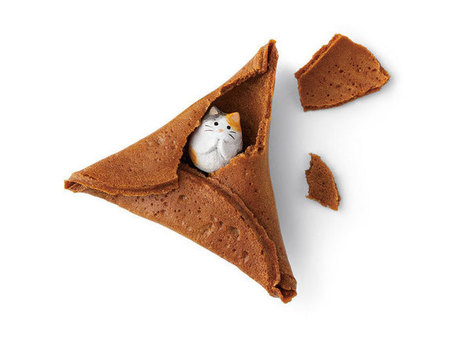 #Japan Created A Purrfect Alternative To Fortune Cookies – #Fortune #Cat #Rice Crackers | What makes Japan unique | Scoop.it