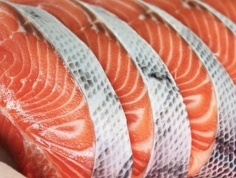 Trader Joe's, Whole Foods, and Other Big Grocers Make Big Decision on GMO Salmon | Social Media, the 21st Century Digital Tool Kit | Scoop.it