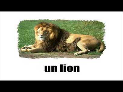 Reviser le FLE en chansons: LES FATALS PICARDS: 'La ferme' | Le journal du FLE des PUG | Scoop.it
