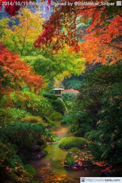Tweet from @BotMaker_Sniper | A Love of Japanese Gardens | Scoop.it