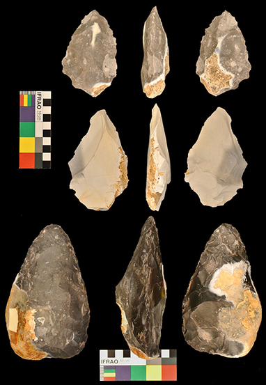 Language and tool-making skills evolved at same time | Amazing Science | Scoop.it