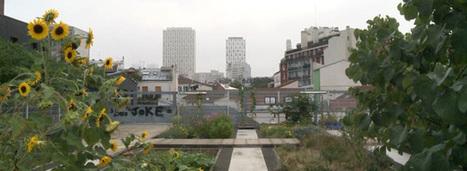 [vidéo] Le végétal à la conquête de la ville   biodiversité en milieu urbain   Scoop.it