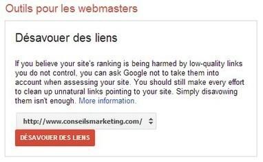 Désavouer des liens auprès de Google   Institut de l'Inbound Marketing   Scoop.it