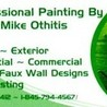 Professional Painting by Mike