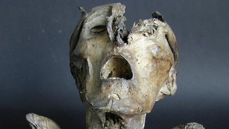New Mummy Analysis Shows Advances in Dark Age Biology ...   Deborah   Scoop.it