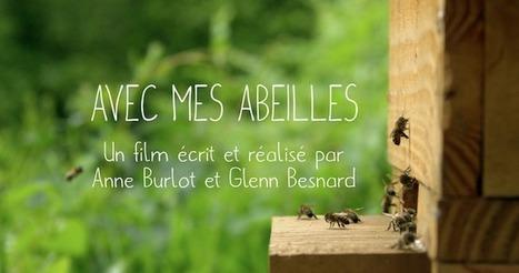 Elever les abeilles, c'est une philosophie | Variétés entomologiques | Scoop.it