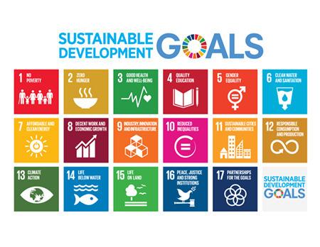 Sustainable Development Goals .:. Sustainable Development Knowledge Platform | Education for Sustainable Development | Scoop.it