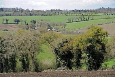 OGM, agro-écologie: Sud Solidaires s'interroge sur la stratégie de l'Inra - Agriculture - ouest-france.fr   Abeilles, intoxications et informations   Scoop.it