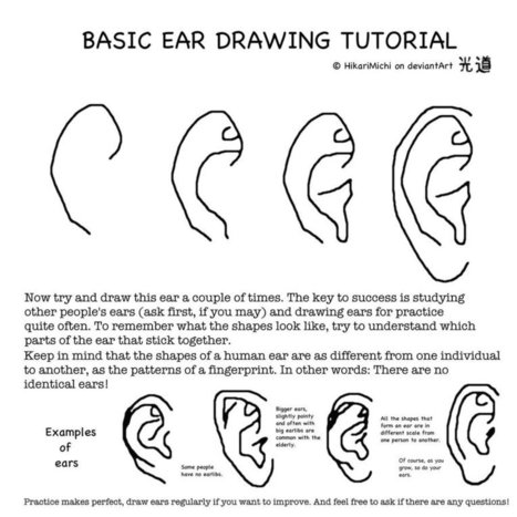 Steps To Draw Ears In Drawing References And Resources