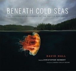 New Book, Video on #Scuba Diving British Columbia   #Canada   Coldwater Scuba Diving   Scoop.it