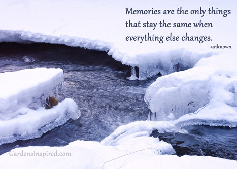 Memories | The Muse | Scoop.it