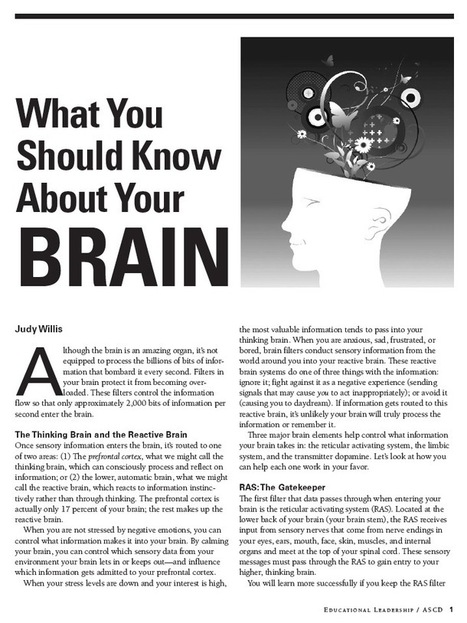 What You Should Know About Your Brain | Brain Compatible Classrooms | Scoop.it