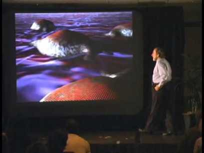 Watch Biology of Belief – by Bruce Lipton (full documentary) | Conciencia Colectiva | Scoop.it