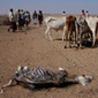 Famine in Kenya