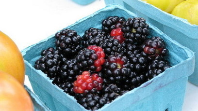 Blackberry juice stops pathogen growth | Healthy Recipes and Tips for Healthy Living | Scoop.it