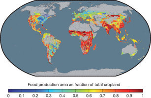 Solutions for a cultivated planet : Nature   Transition Culture   Scoop.it